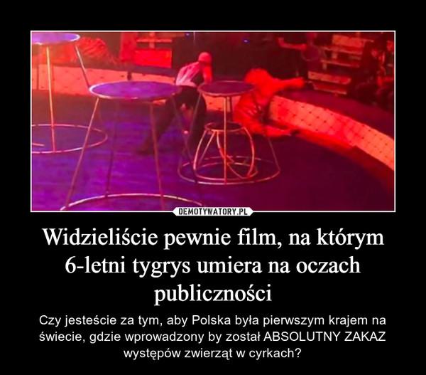 Widzieliście pewnie film, na którym 6-letni tygrys umiera na oczach publiczności – Czy jesteście za tym, aby Polska była pierwszym krajem na świecie, gdzie wprowadzony by został ABSOLUTNY ZAKAZ występów zwierząt w cyrkach?