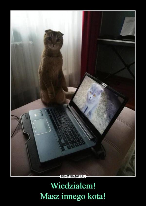 Wiedziałem!Masz innego kota! –