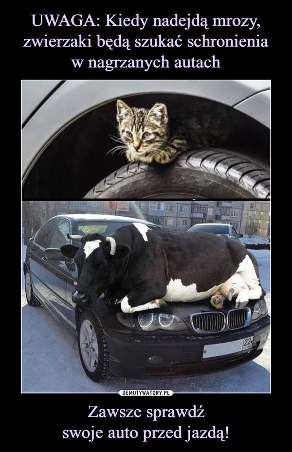 Zawsze sprawdźswoje auto przed jazdą! –