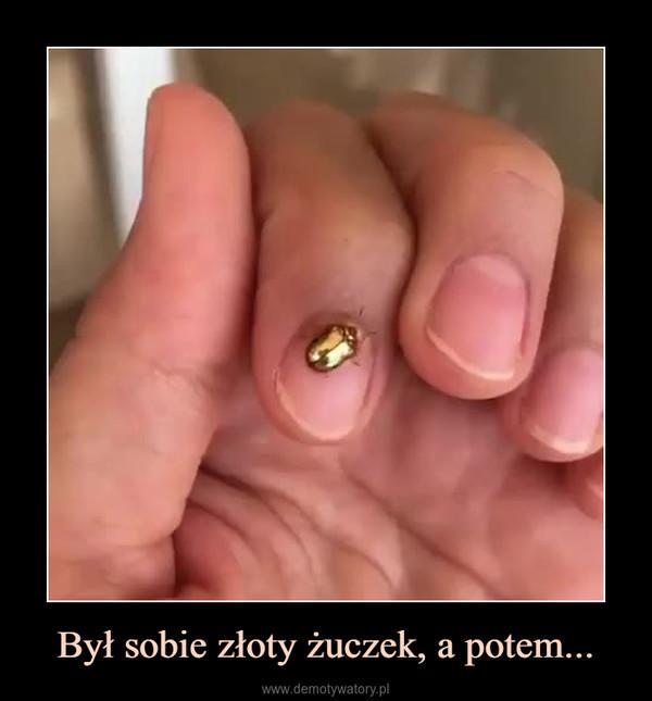 Był sobie złoty żuczek, a potem... –