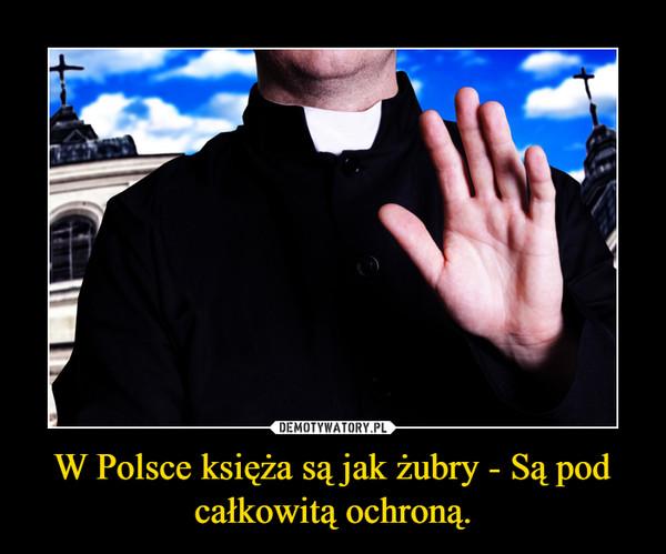 W Polsce księża są jak żubry - Są pod całkowitą ochroną. –