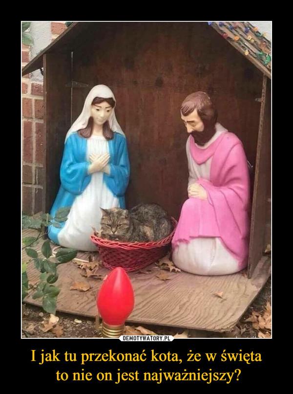 I jak tu przekonać kota, że w święta to nie on jest najważniejszy? –