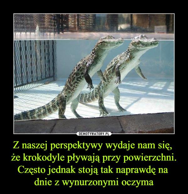 Z naszej perspektywy wydaje nam się, że krokodyle pływają przy powierzchni. Często jednak stoją tak naprawdę na dnie z wynurzonymi oczyma –