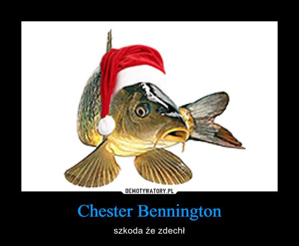 Chester Bennington – szkoda że zdechł