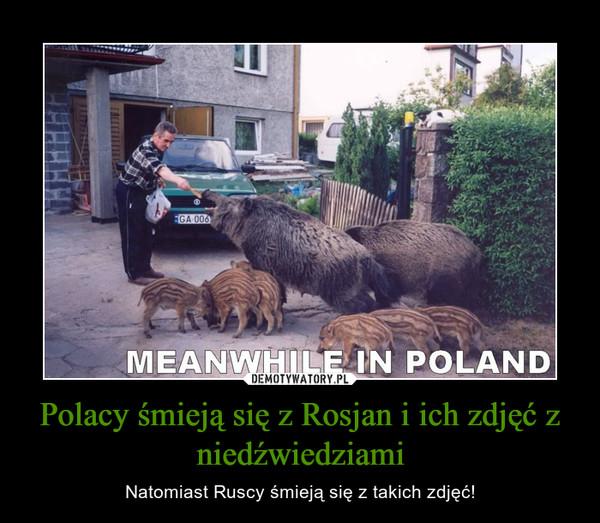 Polacy śmieją się z Rosjan i ich zdjęć z niedźwiedziami – Natomiast Ruscy śmieją się z takich zdjęć!