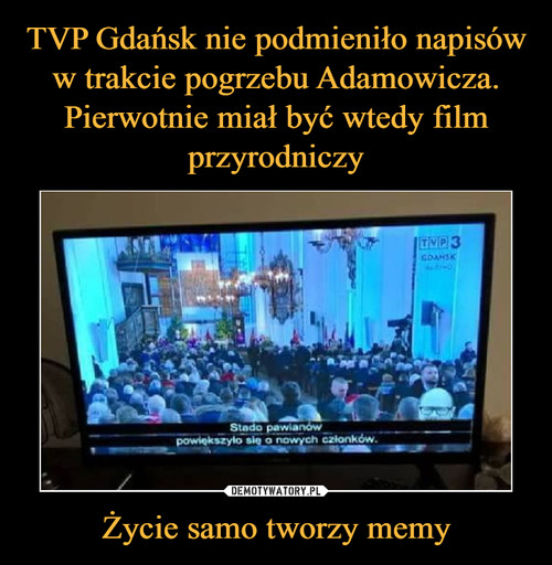 TVP Gdańsk nie podmieniło napisów w trakcie pogrzebu Adamowicza. Pierwotnie miał być wtedy film przyrodniczy Życie samo tworzy memy