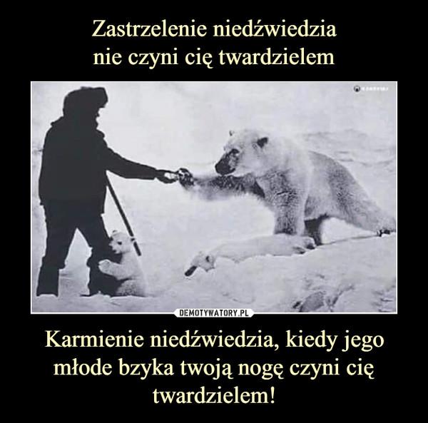 Karmienie niedźwiedzia, kiedy jego młode bzyka twoją nogę czyni cię twardzielem! –
