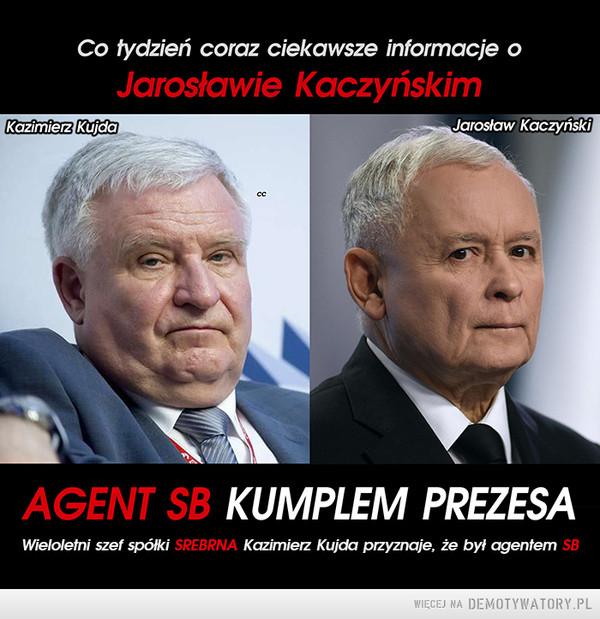 Ludzie Kaczyńskiego –