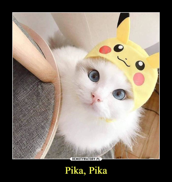 Pika, Pika –
