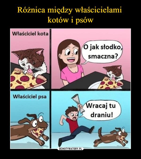 –  Właściciel kota O jak słodko, smaczna? Właściciel psa Wracaj draniu!