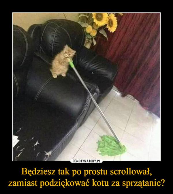 Będziesz tak po prostu scrollował, zamiast podziękować kotu za sprzątanie? –