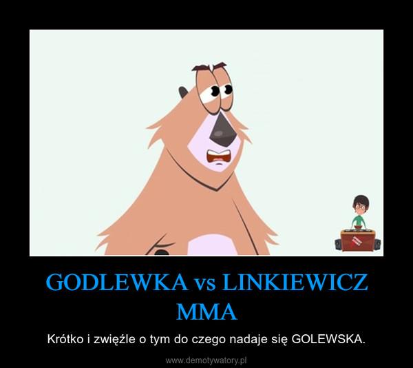 GODLEWKA vs LINKIEWICZ MMA – Krótko i zwięźle o tym do czego nadaje się GOLEWSKA.