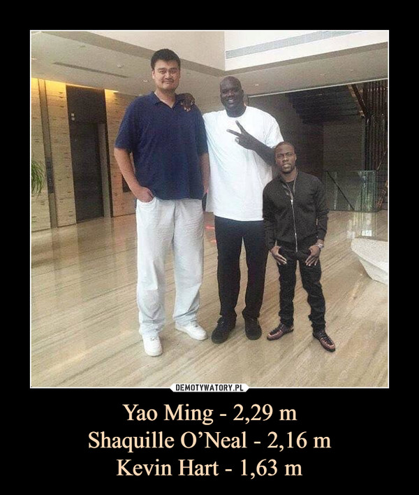 Yao Ming - 2,29 mShaquille O'Neal - 2,16 mKevin Hart - 1,63 m –