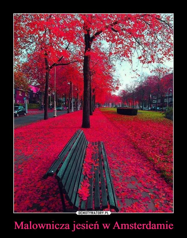 Malownicza jesień w Amsterdamie –
