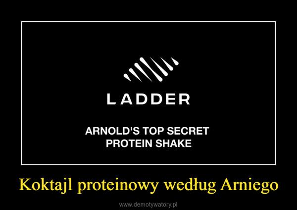 Koktajl proteinowy według Arniego –
