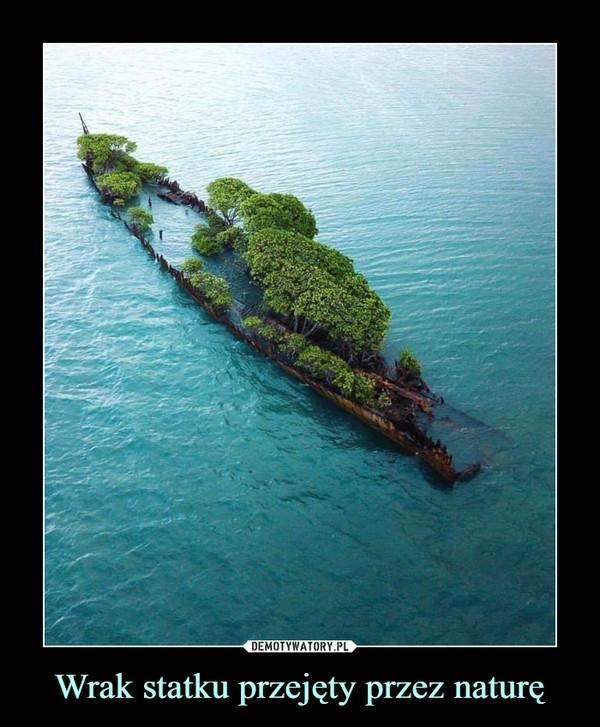 Wrak statku przejęty przez naturę –