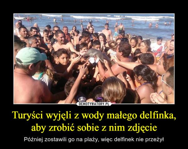 Turyści wyjęli z wody małego delfinka, aby zrobić sobie z nim zdjęcie – Później zostawili go na plaży, więc delfinek nie przeżył