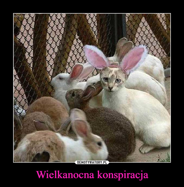 Wielkanocna konspiracja –