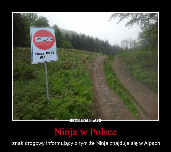 Ninja w Polsce – I znak drogowy informujący o tym że Ninja znajduje się w Alpach.