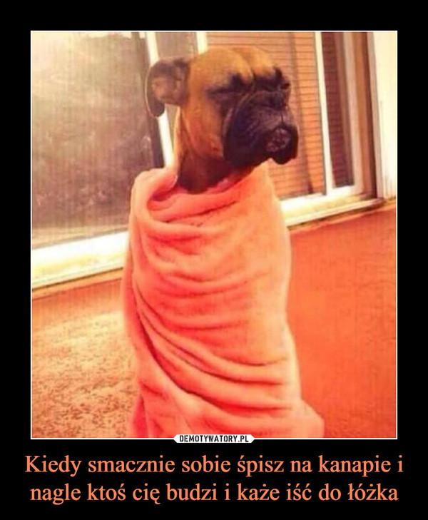Kiedy smacznie sobie śpisz na kanapie i nagle ktoś cię budzi i każe iść do łóżka –