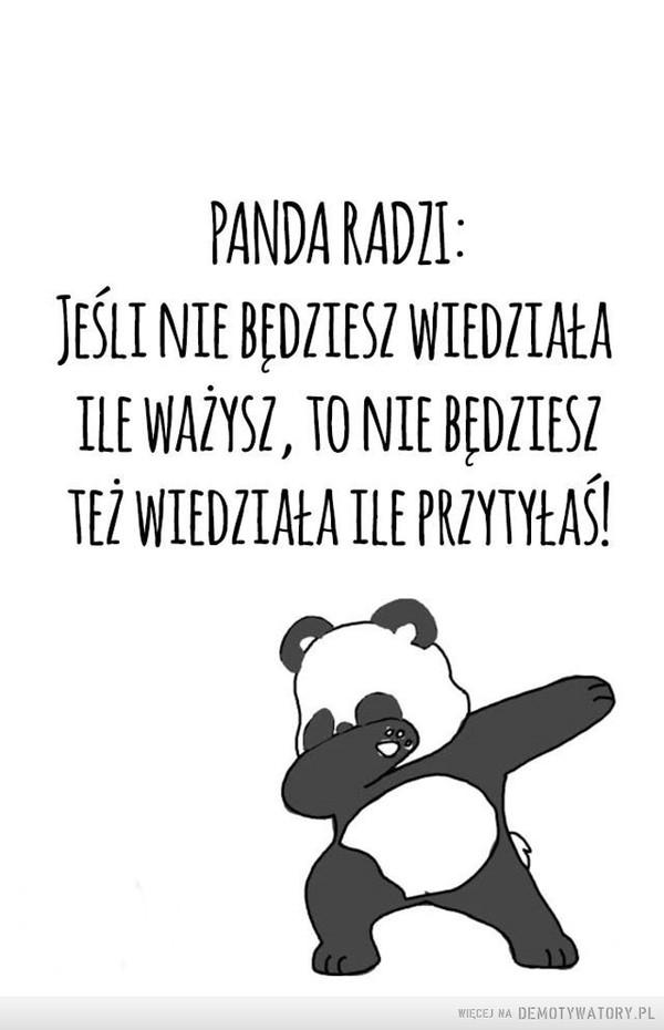 Mądra panda –  PANDA RADZI:JEŚLI NIE BĘDZIESZ WIEDZIAŁA ILE WAŻYSZ, TO NIE BĘDZIESZ TEŻ WIEDZIAŁA ILE PRZYTYŁAŚ!