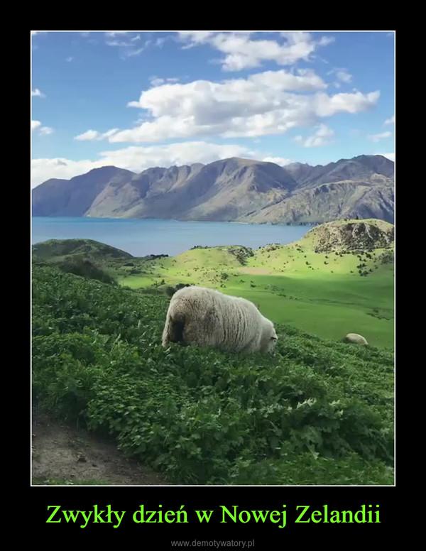 Zwykły dzień w Nowej Zelandii –