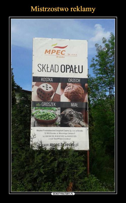 Mistrzostwo reklamy