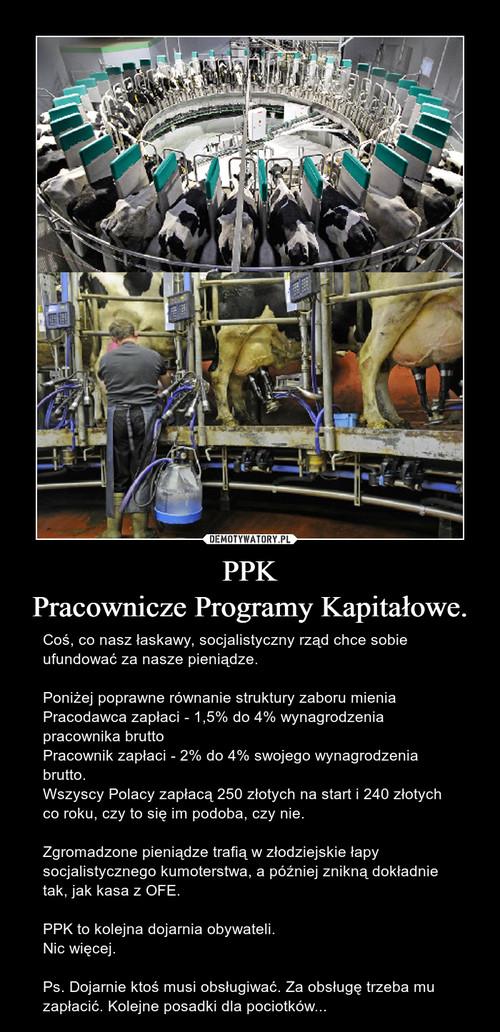 PPK Pracownicze Programy Kapitałowe.