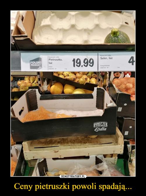 Ceny pietruszki powoli spadają...
