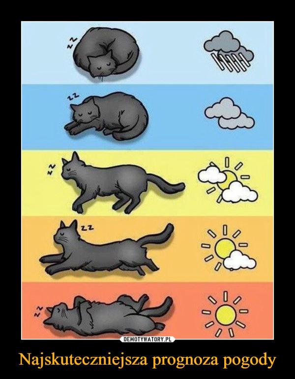 Najskuteczniejsza prognoza pogody –