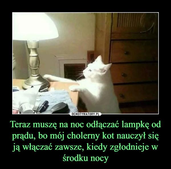 Teraz muszę na noc odłączać lampkę od prądu, bo mój cholerny kot nauczył się ją włączać zawsze, kiedy zgłodnieje w środku nocy –