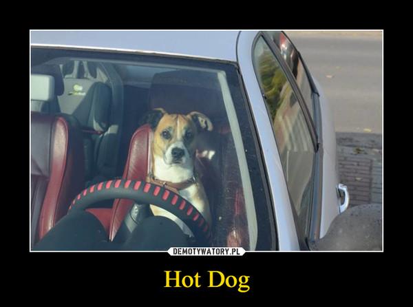 Hot Dog –