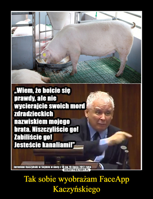 Tak sobie wyobrażam FaceApp Kaczyńskiego