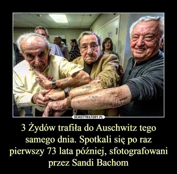 3 Żydów trafiła do Auschwitz tego samego dnia. Spotkali się po raz pierwszy 73 lata później, sfotografowani przez Sandi Bachom –