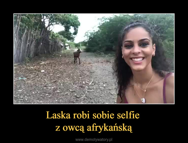 Laska robi sobie selfie z owcą afrykańską –