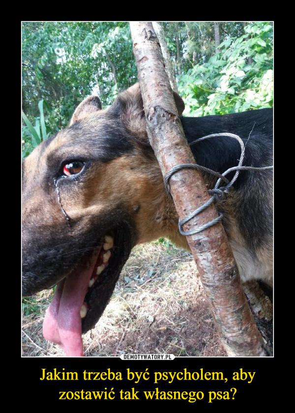 Jakim trzeba być psycholem, aby zostawić tak własnego psa? –
