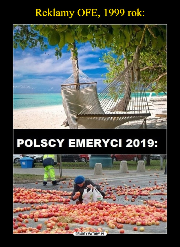 –  POLSCY EMERYCI 2019