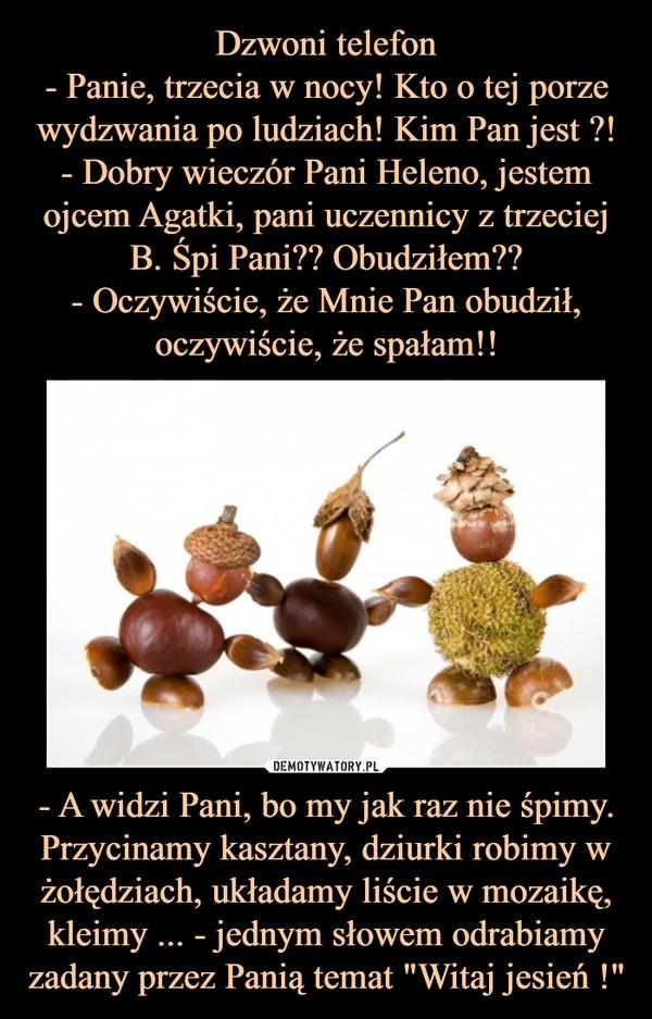 """- A widzi Pani, bo my jak raz nie śpimy. Przycinamy kasztany, dziurki robimy w żołędziach, układamy liście w mozaikę, kleimy ... - jednym słowem odrabiamy zadany przez Panią temat """"Witaj jesień !"""" –"""