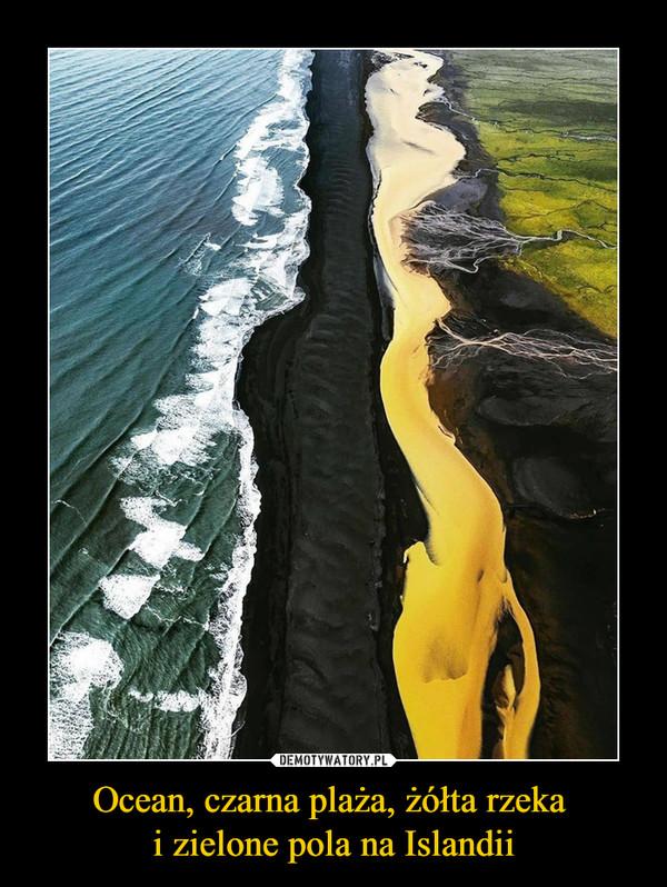 Ocean, czarna plaża, żółta rzeka i zielone pola na Islandii –
