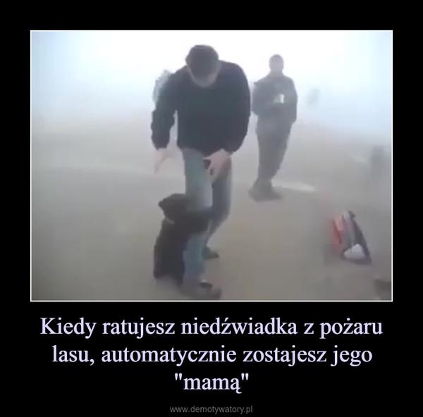 """Kiedy ratujesz niedźwiadka z pożaru lasu, automatycznie zostajesz jego """"mamą"""" –"""