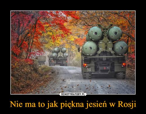 Nie ma to jak piękna jesień w Rosji