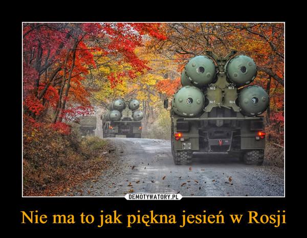 Nie ma to jak piękna jesień w Rosji –