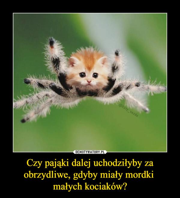 Czy pająki dalej uchodziłyby za obrzydliwe, gdyby miały mordki małych kociaków? –