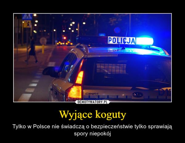 Wyjące koguty – Tylko w Polsce nie świadczą o bezpieczeństwie tylko sprawiają spory niepokój