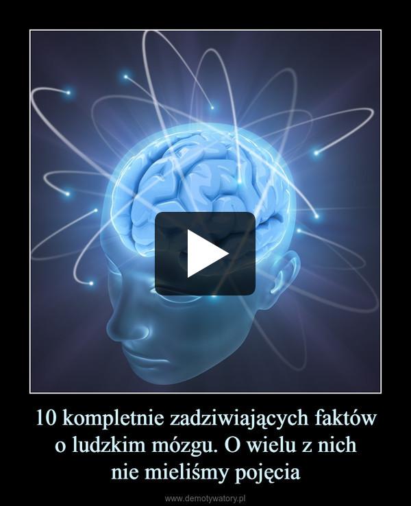 10 kompletnie zadziwiających faktówo ludzkim mózgu. O wielu z nichnie mieliśmy pojęcia –