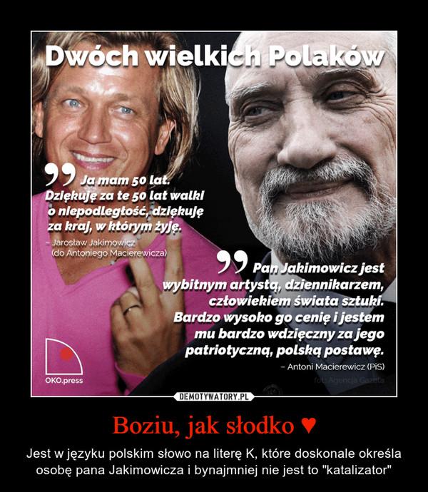 """Boziu, jak słodko ♥ – Jest w języku polskim słowo na literę K, które doskonale określa osobę pana Jakimowicza i bynajmniej nie jest to """"katalizator"""""""
