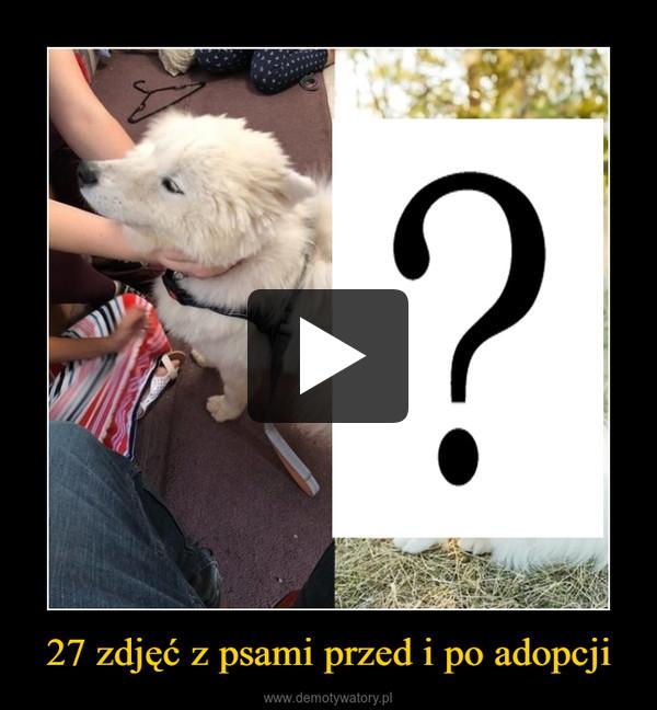 27 zdjęć z psami przed i po adopcji –
