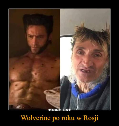 Wolverine po roku w Rosji