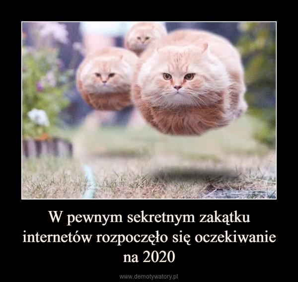 W pewnym sekretnym zakątku internetów rozpoczęło się oczekiwanie na 2020 –