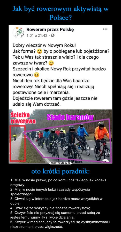 Jak być rowerowym aktywistą w Polsce? oto krótki poradnik: